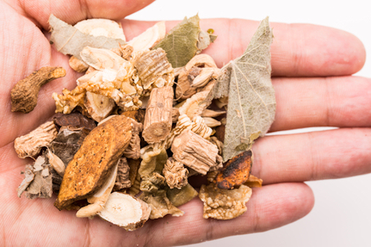 Chinese Herbs For Our Pets