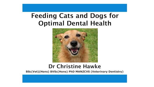Feeding Dogs & Cats For Optimal Health