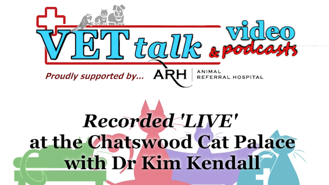 Dr Kim Kendall 'LIVE' from Chatswood Cat Palace